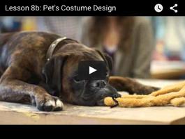 Lidl - Lesson 8b: Pet's Costume Design (xmas 2015)